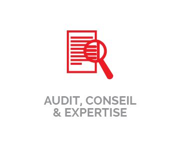 Audit, Conseil & Expertise