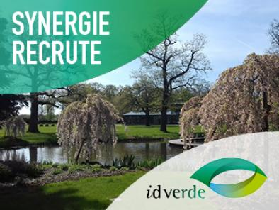 Synergie recrute pour ID Verde